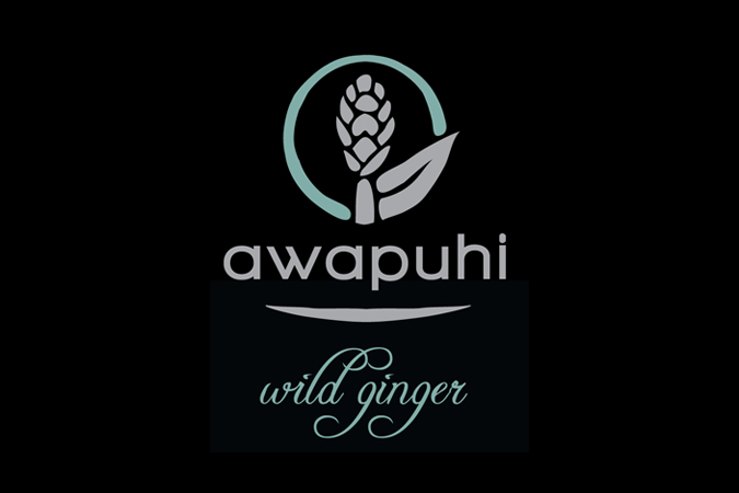 Awapuhi Wild Ginger Photo